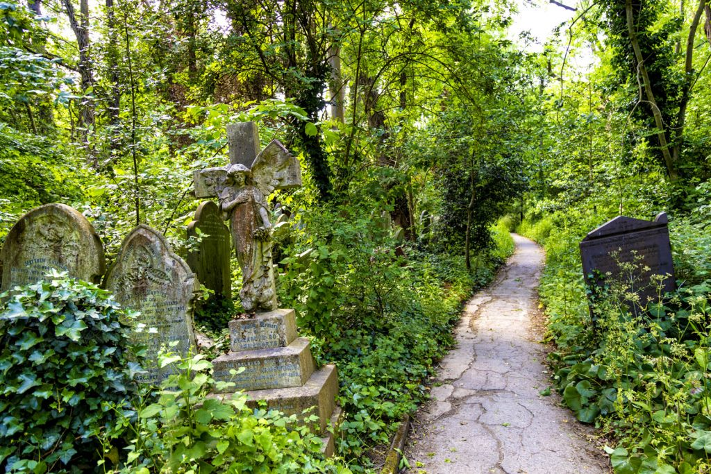 Graves and path through Abney Park Cemetery, London, UK