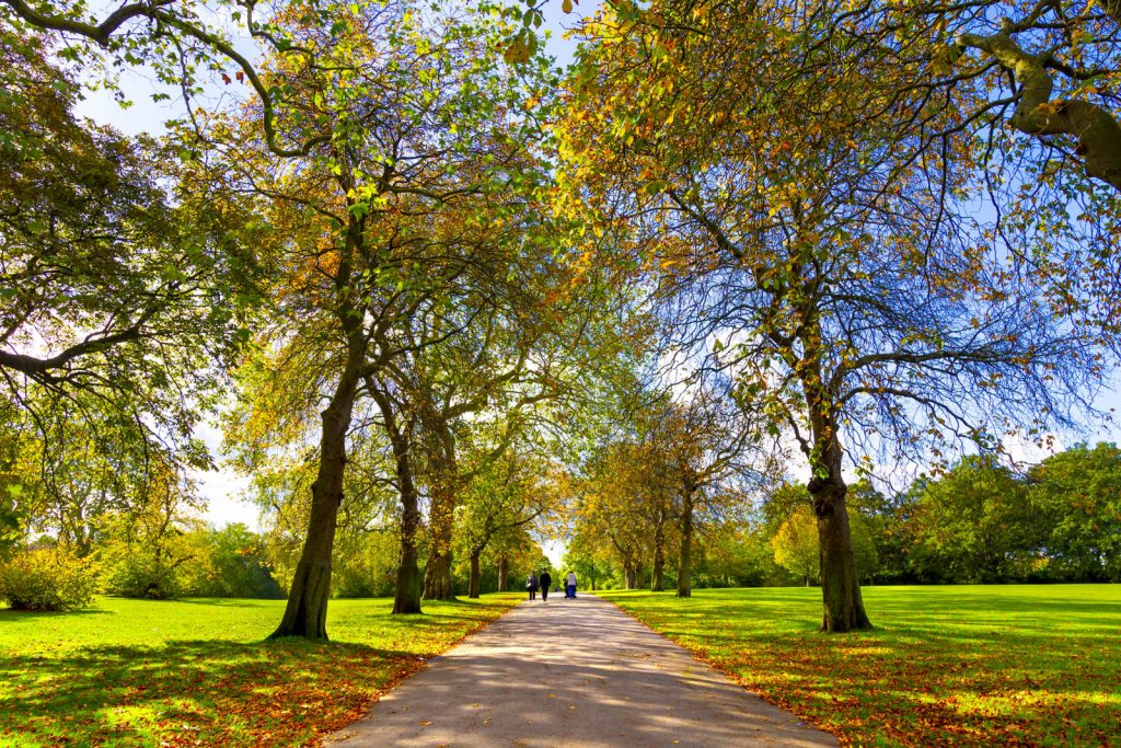 Regent's Park in autumn, London, UK